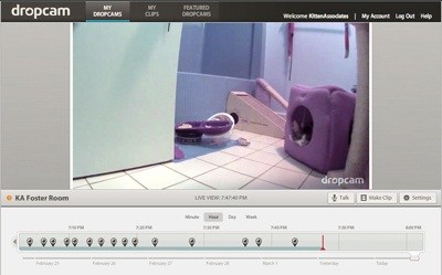 Dropcam inteface 400.jpg