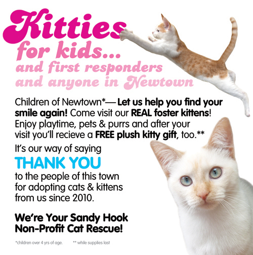 Kitties for Kids FlyerKA Version copy.jpg